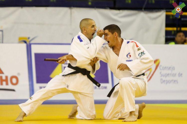 Stage de Kata organisé par le Comité Isère de Judo Jujitsu et D.A.  le dimanche 18 octobre 2020 ouvert aux licenciés de la Ligue AURA
