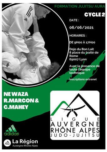 Formation perfectionnement Jujitsu 2021, 2ème session : Ne Waza